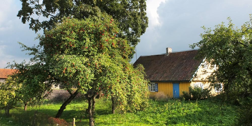 Bike Holiday Estonia – Latvia