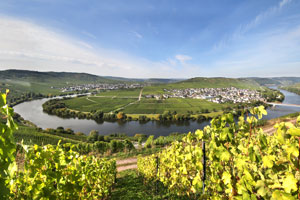 Moselle Cycling Holiday