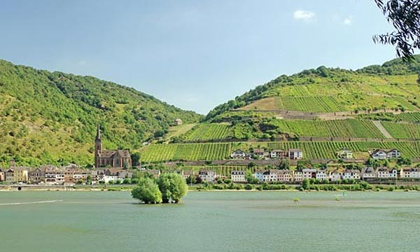 Bike Cruise Rhine